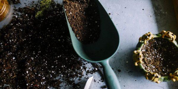 gardening, pots, soil
